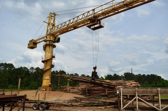 Small timbers are loaded onto the conveyor belt at Victory's chip and lumber mill in Camden, AR.